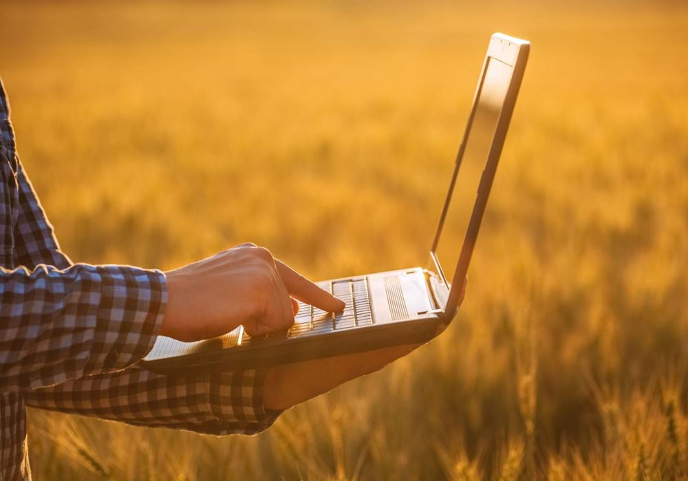 laptop in the field