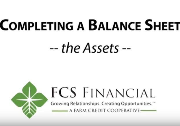 How to complete the assets portion of a balance sheet