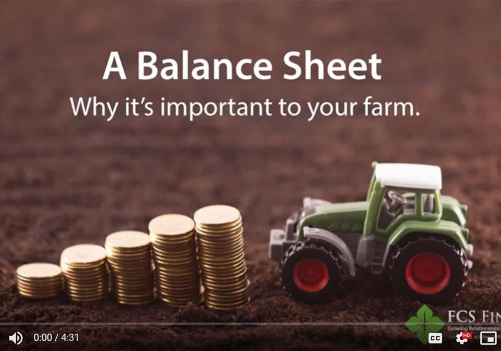 How to complete a balance sheet to buy land or a farm