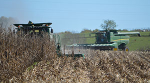combines in the field - Rosiers