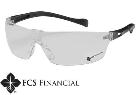 FCS Financial safety glasses